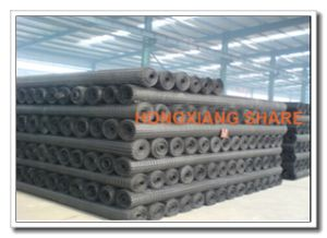 PVC Coated Polyester Geogrid with Ce Certificate pictures & photos