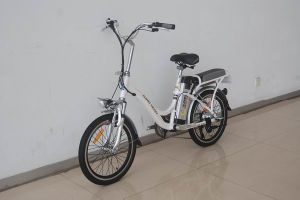 City Electric Bikes (TDN1101Z) Withe pictures & photos