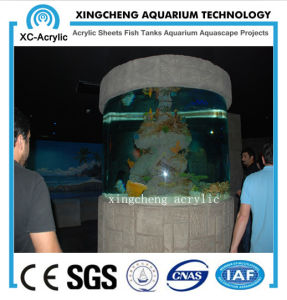 Cylindrical PMMA Fish Tank of Aquarium Project pictures & photos