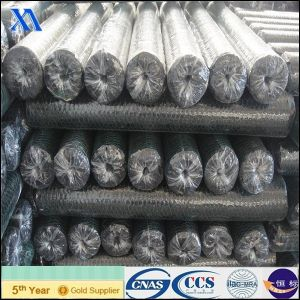 Hot Dipped Galvanized Hexagonal Wire Mesh pictures & photos