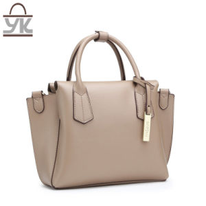 PU Leather Special Fashion Women Bat Handbag pictures & photos