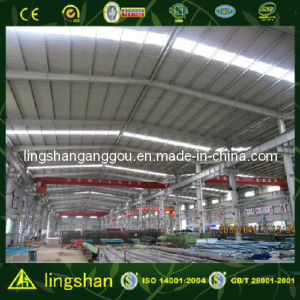 Large Span Steel Sheet Steel Structure Warehouse (LS-SS-002) pictures & photos