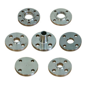 Stainless Steel Flanges with Precision Hot Forging (DR072) pictures & photos
