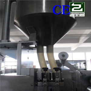 Gain Four-Side Sealing and Multi-Line Packing Machine pictures & photos
