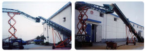 Bulk Material Conveyor for Container Bulk Grain Transporting Machine pictures & photos