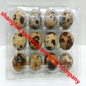 Recyclable PVC Plastic Quail Egg Trays for Incubator pictures & photos