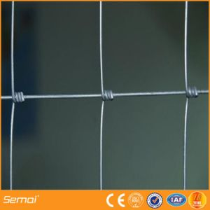 High Quality Cheap High Tensile Cattle Fence pictures & photos