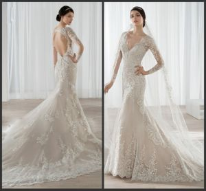 Mermaid Bridal Gowns Nude Lining Lace Wedding Dress Hb2018 pictures & photos