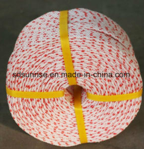 Hot Selling PP Danline Rope 3mm to 5mm pictures & photos