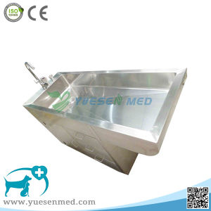 Medical 304 Stainless Steel Veterinary Pet Cleaning Tank pictures & photos