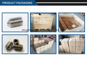 Hexagon Socket Set Screw Swith Cone Point pictures & photos