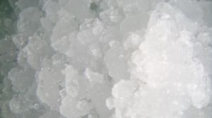 Flake Ice Machine (SZB-50) pictures & photos