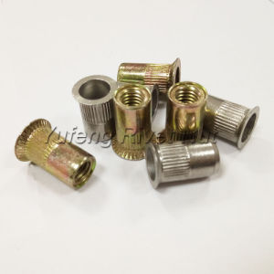 Carbon Steel/Stainless Steel Countersunk Knurled Body Rivet Nut pictures & photos