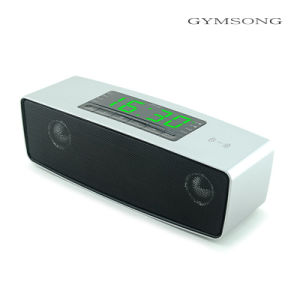 Gymsong Mini Portable Speaker with Android APP Ios Control FM USB Speaker pictures & photos