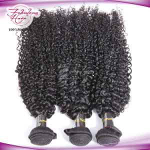 8A Grade Kinky Curly Indian Human Virgin Hair Wig pictures & photos