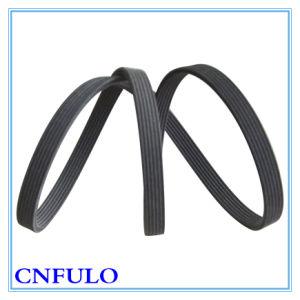 V-Ribbed Belt pictures & photos