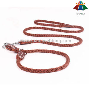 Hot-Sale High-Quality Solid Color 10mm Polyester/Nylon Leash & Selve-Adjustable Collar pictures & photos