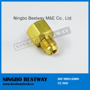Brass and Bronze Pex Fitting pictures & photos