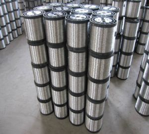 Stainless Steel Wire for Cleaning Balls pictures & photos