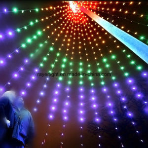 LED Holiday Twinkle Net Light Flag Pole Light Decoration pictures & photos