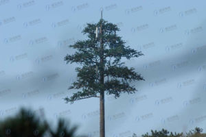 Camouflaged Bionic Tree Telecom Tower pictures & photos