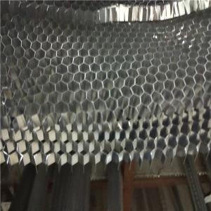 Aluminium Honeycomb (1100, 3003, 5052 alloy) pictures & photos