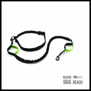 Pet Supply Products Waist Hands Free Dog Running Leash pictures & photos