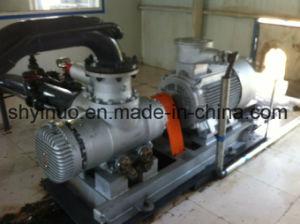 Screw Pump for Liquid (2W. W) pictures & photos