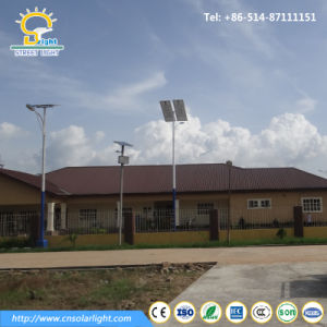5m, 6m, 7m 40W Solar Light with Poly Panel for Pakistan pictures & photos