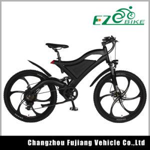 Best Light Weight Electric Bike Tde05 pictures & photos
