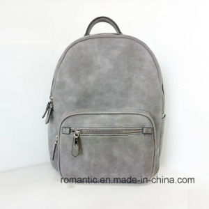 Brand Designer Lady Fake Suede Leather Backpack (NMDK-040504) pictures & photos