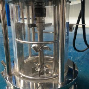 0.5 Liter Mechanical Stirring Fermenter pictures & photos