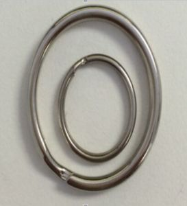Steel or Stainless Steel All Kinds of Key Rings pictures & photos