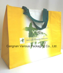 PP Woven Shopping Bag, Tote Bag pictures & photos