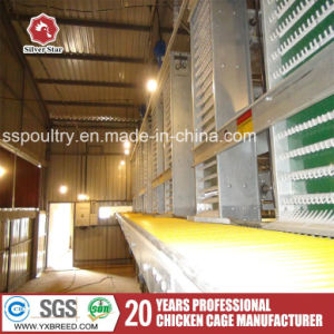 H Type Automatic Battery Cage with Drinkers for Poultry pictures & photos