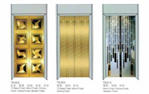 Home Elevator Machine Roomless with Mirror Real Wall pictures & photos