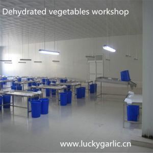 Fresh Vegetable Garlic Granules Dried Garlic pictures & photos
