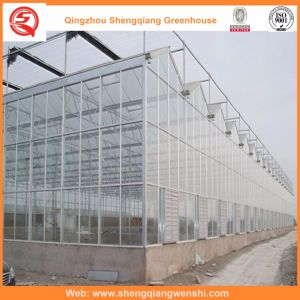 Agriculture Multi Span Polycarbonate Sheet Green House for Vegetables pictures & photos
