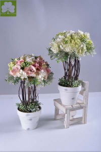Rose and Hydrangea Tree  in Pulp Pot for Promotion pictures & photos