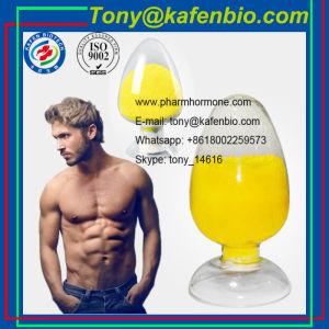 Fat Loss Steroids Powder 2, 4- Dinitrophenol DNP for Medicine