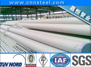 SUS316L Stainless Steel Tube (SUS304 SUS 321 SUS316 SUS316L SUS310S) pictures & photos