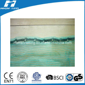 Green Color Scaffold Net/Safety Net pictures & photos