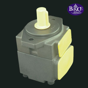 China Blince PV2r Hydraulic Motor Pump pictures & photos