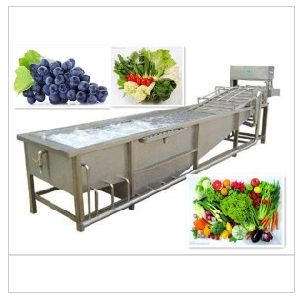 Recommended Selling Reliable Products for Commercial Vegetable and Fruit Washing Machine