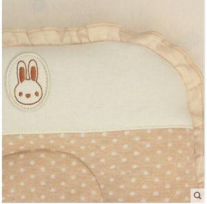 Organic Cotton Baby Buckwheat Pillow pictures & photos