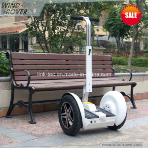 Wind-Rover V6 2 Wheel Standing Self Balancing Electric Child Scooter 1000W pictures & photos