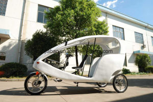German Design Velo Taxi Electric Pedicab 48V (300K-06) pictures & photos