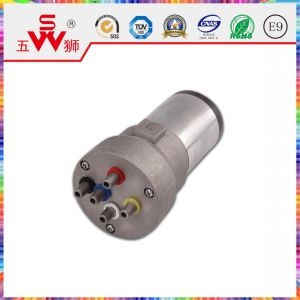 China Factory Professional Air Pump for Car Horn pictures & photos