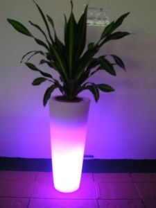 LED Flower Pot Bz-Fl3895 pictures & photos