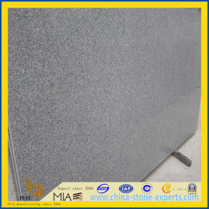 New G603 Grey Granite Tiles for Flooring/ Wall / Kitchen Tile pictures & photos